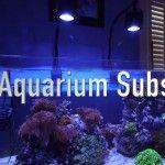 Video: Reef Aquarium Substrate Choices