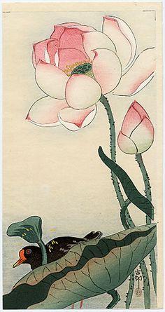 """""""A Gallinule beneath Flowering Lotus"""" by Koson"""