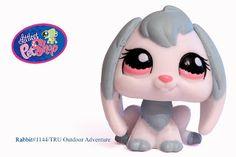 Lps Littlest Pet Shop, Little Pet Shop Toys, Little Pets, Lps Sets, Lps Dog, Lps Accessories, Dragon Crafts, Toy Boxes, Doll Toys