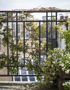 Comment jardiner du balcon au salon : découvrez les 10 commandements déco du jardinage...
