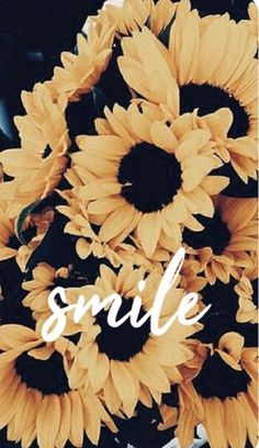 Wallpaper that makes you smile! Wallpaper to inspire smiles on you ♥ Source by lea_wiegand Smile Wallpaper, Iphone Background Wallpaper, Laptop Wallpaper, Aesthetic Iphone Wallpaper, Cool Wallpaper, Aesthetic Wallpapers, Wallpapers Tumblr, Tumblr Wallpaper, Cute Wallpapers