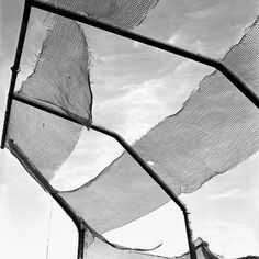 Ripped and waving in the breeze netting of a baseball (?) diamond structure. Untitled, Undated