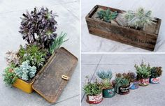 It's no secret that Apartment Therapy and its readers are big fans of succulents – we in fact started pruning and clipping ours last weekend to get them ready for the spring. Once the clippings start rooting they'll be ready for a new home, and we're really digging these upcycled pot ideas from Living Arrangements.