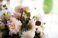 """La Flor Dalia procede de los bosques del Sur y Centro de México, está formada por unas veinte especies diferentes. Los aztecas la llamaban xicaxochitl (flor de camote) puesto que se reproduce mediante bulbos. Los españoles la importaron a Europa bajo el nombre de """"jicamote""""."""