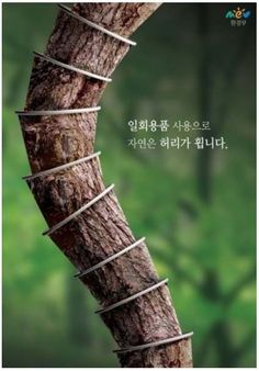국내) 환경보존이라는 주제로 나무로만든 종이컵을 사용하면 자연의허가 휜 모습을 종이컵으로 재미있게 표현한 디자인이다.