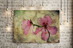 Floral pink canvas abstract canvas art by AlisonSquiersPhotos