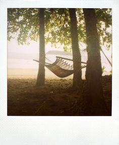 looks like a nice little hammock