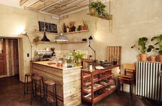 Like the plants hanging from the ceiling on a shelf...roamers coffee, berlin