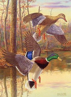 art of randy mcgovern | Limited edition waterfowl art prints by Randy McGovern (Page 5/5)