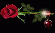 Szép rózsák,Egy csokor virág, - kincsesszigeten Blogja - Anyák napja,ARANYOS GYEREKEK,BALARÍNÁK,BALERÍNÁK,BAROMIRA AGYAFÚRT TESZT,BILLENTYŰ RAJZOK,DÍSZTETT BETŰK,EGYTÁL ÉTELEK,ÉRDEMES EL OLVASNI!,ÉTEL RECEPTEK,FAHÉJASMÉZ,FINOM SÜTIK,GYÖNYÖRŰ FÁK ESTI FÉNYBEN,HATTYÚK,Hollósi Norbert: Merj és bízz.,HOROSZKÓP KÉPEK,IDÉZETEK ÉS KÉPEK,JEGES VIRÁGOK,JÓ ÉJT KÉPEK,JÓ REGGELT KÉPEK,JÓ TUDNI, A HAGYMA,KÖSZÖNTÉS ,MÁGIKUS 3D KÉPEK,NYUGDIJJASOKNAK!,POLLER ILDIKÓ GYÖNYÖRŰ VERSEI,SZEM TESZT,SZÉP…