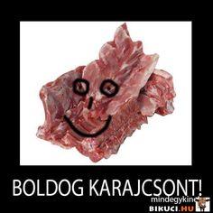 Bad Memes, Funny Memes, Jokes, Chuck Norris, Stranger Things, Lol, Smile, Ideas, Strange Things