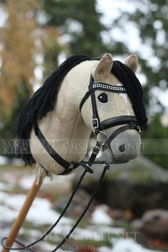 Hobby Horse Halfter - Hobby For Couples Over 50 - - Summer Hobby For Women - Things To Learn Hobby - Hobby For Teens Ideas Unusual Hobbies, Easy Hobbies, Hobbies To Take Up, Hobbies For Couples, Hobbies For Women, Hobbies That Make Money, Hobby Lobby Shelves, Hobby Lobby Christmas, Stick Horses