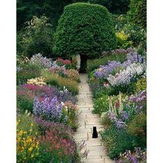 """schöne Bilder: """"Cat in Garden – von Greg Gawlowski"""" – … - Garten"""