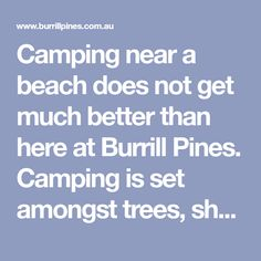 Camping near a beach does not get much better than here at Burrill Pines. Camping is set amongst trees, sheltered from wind and only 5 minutes walk to the beach which is excellent for surfing, swimming and snorkeling. Camping Ideas, Snorkeling, Pine, Surfing, Trees, Swimming, Beach, Diving, Pine Tree