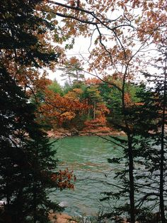 Wolfe's Neck State Park - Maine Road Trip