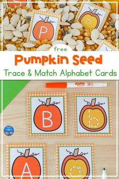"""Use this free printable pumpkin seed alphabet activity as a fun way to practice lowercase letter tracing and alphabet letter matching skills. Include these in October literacy centers for preschool or kindergarten, or add them to a fall sensory bin. Add these to preschool pumpkin lesson plans and """"From Seed to Pumpkin"""" activities. Apple Activities, Halloween Activities For Kids, Alphabet Activities, Toddler Activities, Abc Cards, Alphabet Cards, Free Printable Cards, Free Printables, Fall Sensory Bin"""