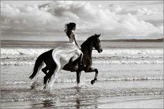 noiva com cavalo - Pesquisa Google
