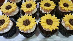 Cupcakes girassol