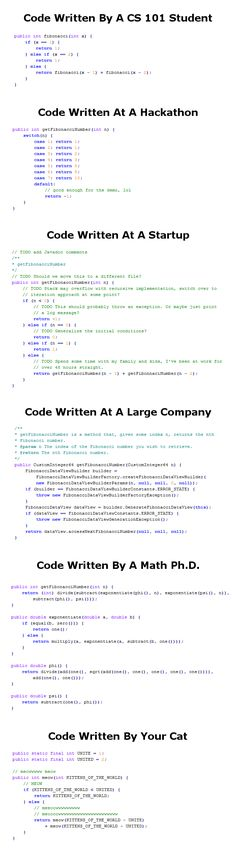 Willa's World: The Six Most Common Species Of Code