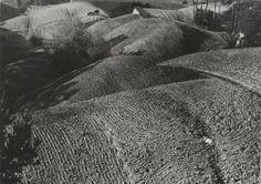 Edward Hartwig (1909 - 2003) - Landscape of the Kielce Region, 1958