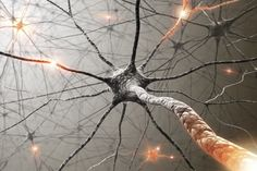 schizophrenia article about brain activity and spontaneous neuron firing