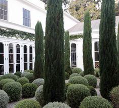 Formal Gardens, Outdoor Gardens, Garden Pavilion, Courtyard Design, Cypress Trees, Kelly Wearstler, Garden Trees, Hem, Courtyards