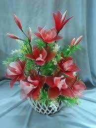 """Képtalálat a következőre: """"hoa voan"""""""