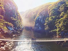 The suspended bridge in Tsitsikamma National Park, Eastern Cape, South Africa : travel Tsitsikamma National Park, Places To Travel, Places To Go, Suspension Bridge, South Africa, Travel Inspiration, National Parks, Around The Worlds, Explore