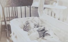 one of two brothers, who died 1908 in the age of 2 years