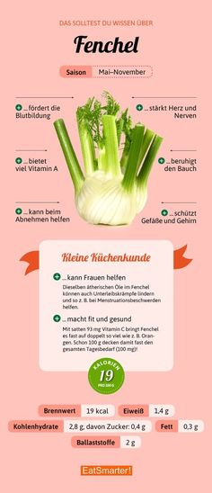 Fenchel You should know about fennel & eatsmarter.de # nutrition The post fennel appeared first on Leanna Toothaker. Healthy Diet Tips, Nutrition Tips, Health And Nutrition, Healthy Life, Healthy Eating, Healthy Recipes, Broccoli Nutrition, Universal Nutrition, Nutrition Classes