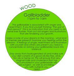 24 hour qi cycle - gall bladder