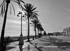 Paseo Marítimo, Playa Malvarrosa