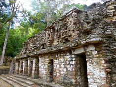 Mayan Ruins, Ancient Ruins, Maya Architecture, Ancient Names, Maya Civilization, Classical Period, Tikal, Native Americans, Aztec