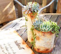 Beautiful succulents in distressed DIY planters Propagating Succulents, Planting Succulents, Planting Flowers, Succulent Gifts, Inside Plants, Miniature Plants, Deco Floral, Garden Types, Succulent Arrangements