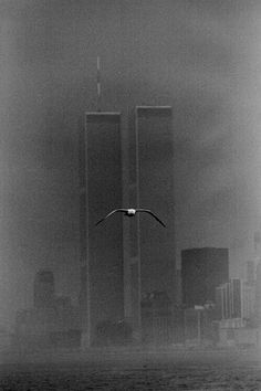 Twin Towers Manatthan, New York 1979 Louis Stettner World Trade Center Nyc, Trade Centre, Lower Manhattan, Louis Stettner, 11 September 2001, Photo D Art, Photo Black, Black And White Photography, Vintage Photos