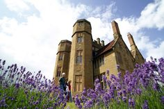 kenilworth castle. lovely with the lavender.