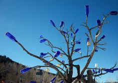 Bottled Trees: African Tradition Used to Trap Evil Spirits and Keep Them Out a Home