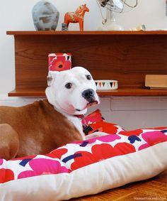 marimekko fabric dog bed via manhattan nest Diy Dog Bed, Dog Pillow Bed, Dog Beds, Floor Pillows, Bed Pillows, Manhattan Nest, Wonder Pets, Dog House Bed, Diy Bett