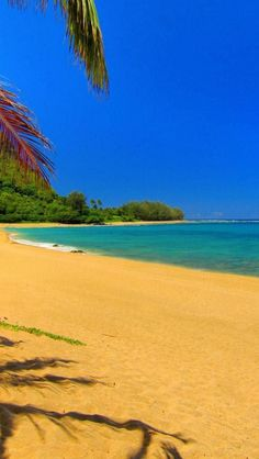 Tunnels Beach, Kauai, Hawaii. Go to www.YourTravelVideos.com or just click on photo for home videos and much more on sites like this.