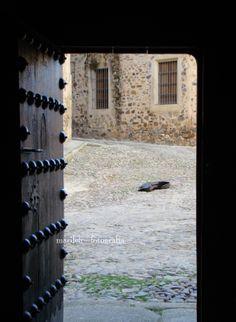 El cantaor, no se veia, pero si se escuchaba.... y como cantaba ¡¡¡ Su funda de guitarra servia para las monedas que recogía.