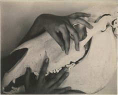 1931: Georgia O'Keeffe—Hands and Horse Skull by Alfred Stieglitz  at the Metropolitan Museum of Art. Gift of Georgia O'Keefe
