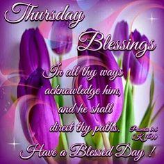 367 Best Bless Thursday Images In 2019 Good Morning Good Morning