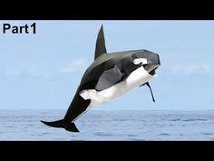Orca (killer whale) Origami tutorial (Satoshi Kamiya) part 1 折り 紙 ballena - YouTube