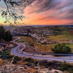 Judean Hills.