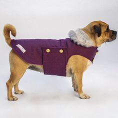 Dog Fashion, Fashion Clothes, Faux Fur Collar, Dog Coats, Metal Buttons, Pet Products, Dachshund, Pink Purple, Bespoke