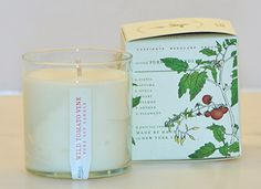 WILD TOMATO VINE Pure Soy Candle Ripe, succulent tomato amid an herbaceous accord of wild clover, fresh herbs and leafy greens creating a picked-fresh-from-the-vine fragrant experience.