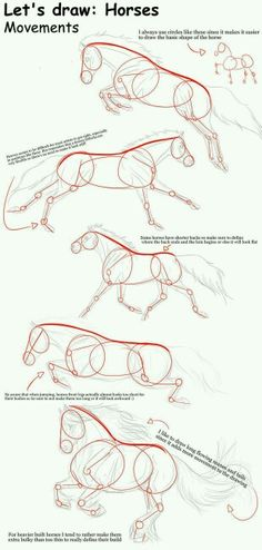 THIS IS SO HELPFUL! i could never draw horses before. Horse movements – Tutorial… That's so helpful! I've never been able to draw horses before. Horse Movements – Tutorial from TinyGlitch Drawing Lessons, Drawing Techniques, Drawing Tips, Drawing Reference, Horse Drawing Tutorial, Drawing Ideas, Drawing Hands, Pose Reference, Figure Drawing