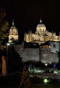 La Catedral Nueva de la Asunción de la Virgen es la catedral más nueva de Salamanca. La construcción empezó en 1513 y terminó en 1733 y porque la construcción duró 220 años, el estilo es una mezcla de gótico tardío y barroco.
