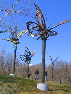 Metamorphosis  The Girard Crossing Public Art Sculpture Project Zinc Coated Forged Steel 130 ft x 25 ft x 20 ft