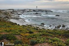 Doringbaai is a picturesque fishing hamlet that was once an anchorage from where provisions were transported to in-country towns by camel train . . Reposted from @frankekard South Africa's stunning South Atlantic #Westcoast. #Doringbaai Goodmorning . . . #visitnwc #discoverctwc #weskus #visitsawinelands #thisissouthafrica #instagram_sa @weskustourism @discoverctwc @visitsawinelands #doringbaai #namaquawestcoast West Coast, South Africa, Camel, Transportation, Fishing, Train, Country, Outdoor, Instagram